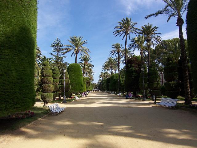 Cadiz Parque genovés - Pedro García